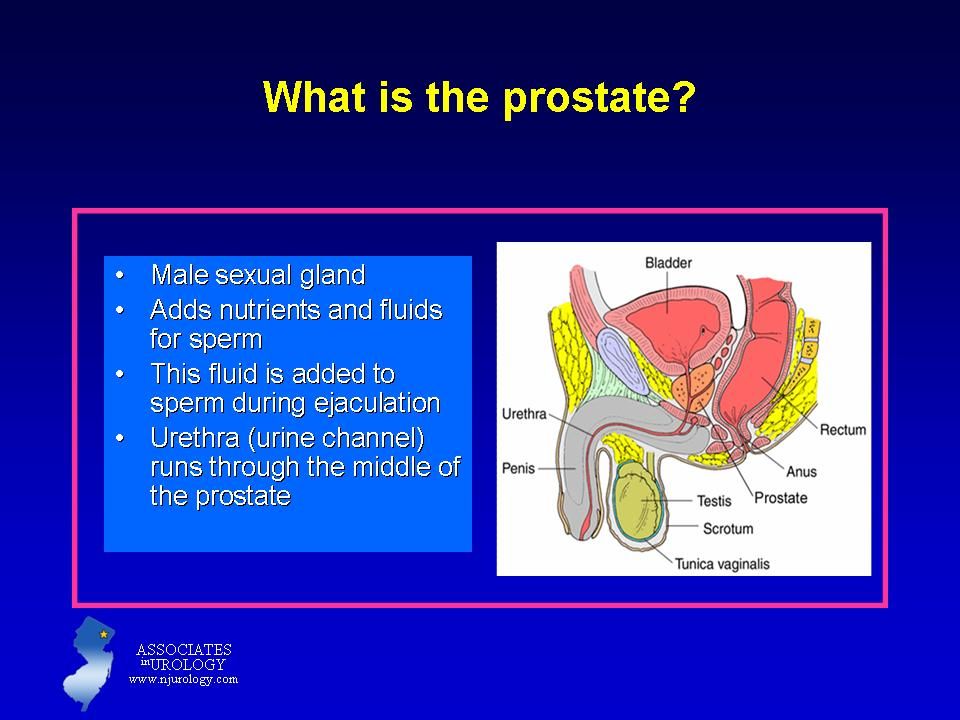 Sexual function after robotic prostatectomy